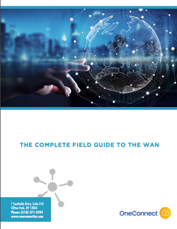 Whitepaper thumbnail for The Complete Guide to the WAN